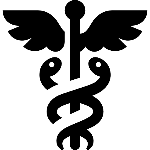 Healthcare Vertical icon